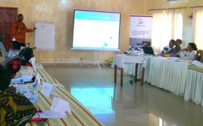 50 HIV health-care workers in Conakry trained on the usefulness and interpretation of viral load tests' results